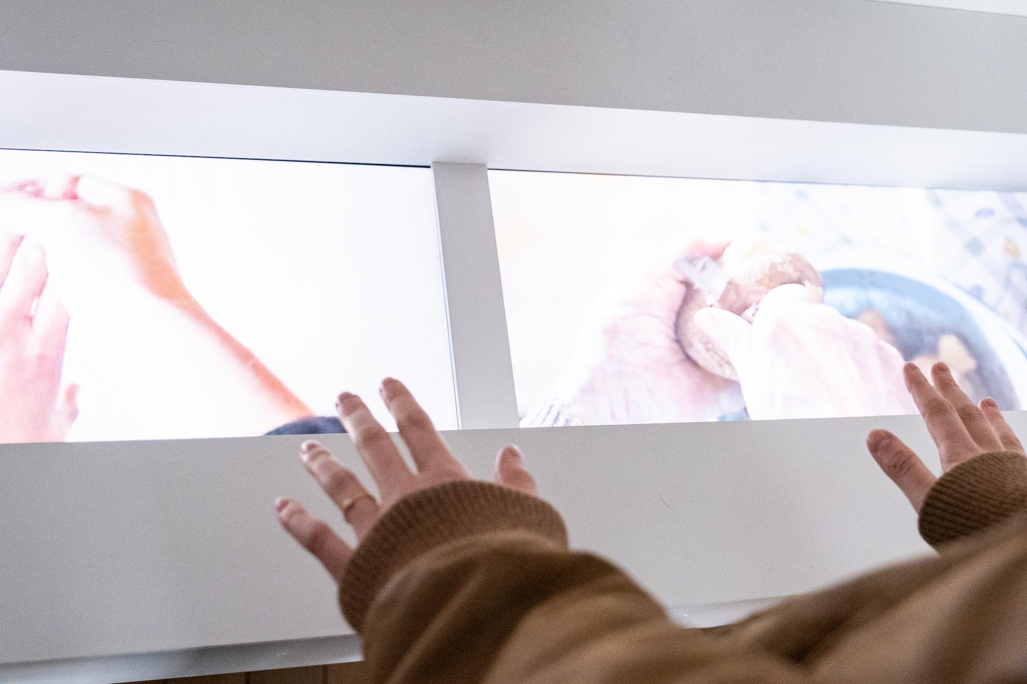 Quatre Mains/Four Hands Video Installation